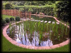 Venhuis vijverbouw bv for Vijverfilter zelf maken