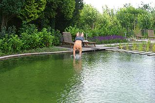 Zwemvijver venhuis vijverbouw bv for Zelf zwemvijver aanleggen kostprijs